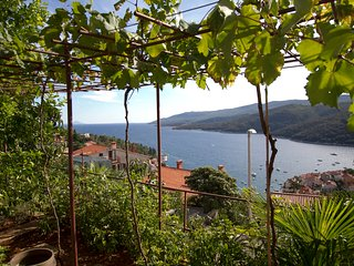 Beautiful sea view app, WiFi, AC  169 - Rabac vacation rentals
