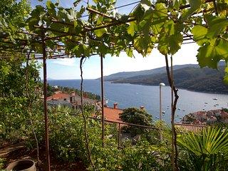Beautiful sea view app, WiFi, AC  169 - Rabac vacation rentals