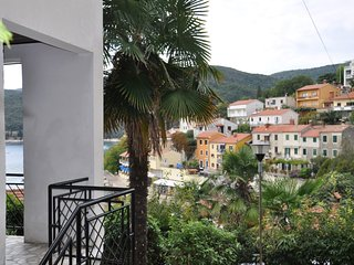 Studio near the sea, pets welcome 367 - Rabac vacation rentals