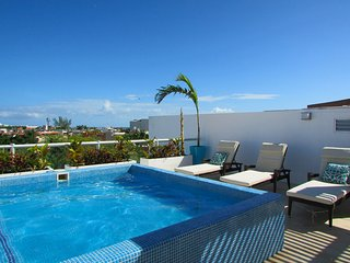 Luxury Penthouse with private rooftop and plunge pool. Steps to 5th! - Playa del Carmen vacation rentals