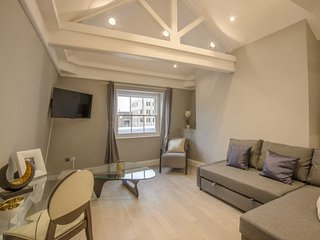Lovely 2 Bedroom Apartment in Prime Covent Garden - London vacation rentals