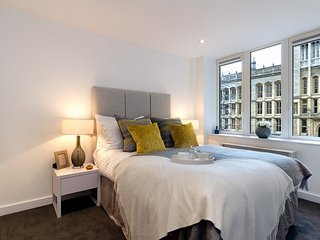 Contemporary 2 Bedroom Apartment in the City of London - London vacation rentals