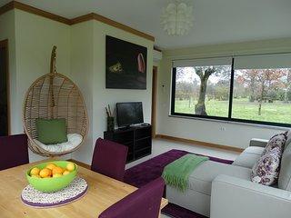 1 bedroom Farmhouse Barn with Television in Mangualde - Mangualde vacation rentals