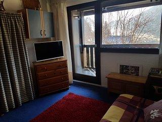 STUDIO 20 m²  à la montagne au coeur du village - Villard-de-Lans vacation rentals