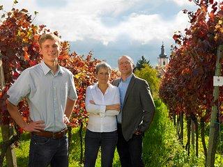 Weingut Meier (ehemals Weingut Valentin Ziegler Sohn) - Weyher in der Pfalz vacation rentals