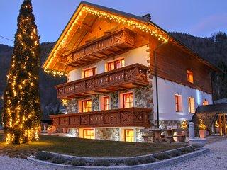 1 bedroom apartment with balconie and stunding mountig wiew (2-5 people) AP.no.5 - Kranjska Gora vacation rentals