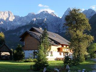 1 bedrom apartment with mounting wiew (1-4 people) AP.no 5 - Kranjska Gora vacation rentals