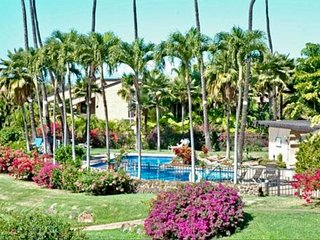 Wailea Ekahi, Privacy and Luxury - $149 - $265/nt       May/July Special $129/nt - Wailea vacation rentals