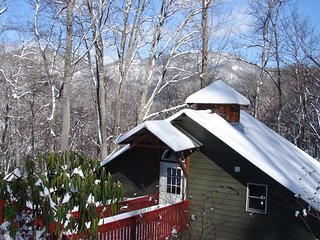 Secluded Cabin Min to Downtown Asheville - Swannanoa vacation rentals