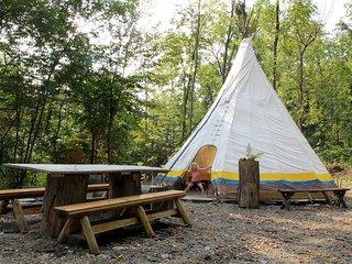 HIAWATHA at Turtle Rock Hollow - Honeoye Lake vacation rentals
