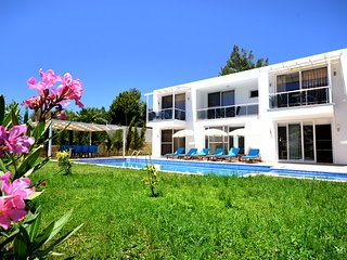 Nice Villa with Internet Access and A/C - Antalya vacation rentals