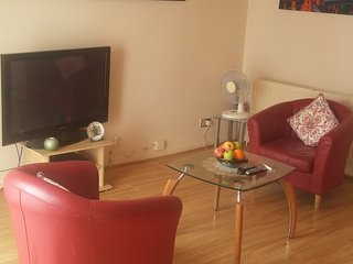 Nice Apartment with Internet Access and Television - Hounslow vacation rentals