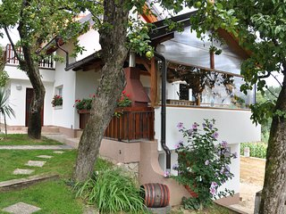 "Apartment ""Eva"" Lepoglava - Lepoglava vacation rentals"