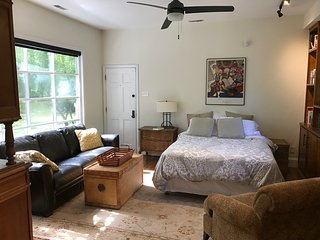 Luxurious Studio - Walk or Bike to Franklin Street and UNC! - Chapel Hill vacation rentals