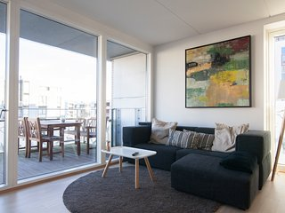 Modern Design Apartment With Ocean View - Copenhagen vacation rentals