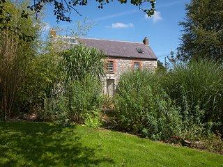 Beautiful 11 bedroom Farmhouse Barn in Ballilogue with Deck - Ballilogue vacation rentals