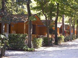 Torre Del Lago Puccini - 2271002 - Torre del Lago Puccini vacation rentals