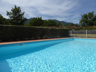 Luxury Holiday Villa for 10 to 12 - Villelongue-dels-Monts vacation rentals
