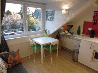 Oneroom Studio near Enschede city centre - Enschede vacation rentals