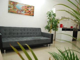 Modern and Spacious Flat in the Heart of Jerusalem - Jerusalem vacation rentals