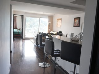 Modern Flat / Apartment in Guatemala City - Guatemala City vacation rentals