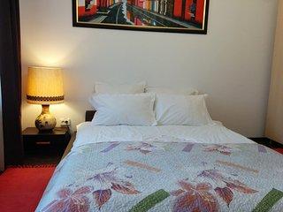 Calea Poienii Penthouse, Classic Double Room Balco - Brasov vacation rentals