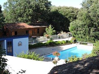 GITES DE PLOS CHALETS CLIMATISES+PISCINE +WI-FI très calme en campagne - Anduze vacation rentals