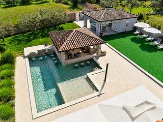 Pool-Bar Villa Istria / ~50m2 private pool / SPA Jacuzzi / Seaview - Vodnjan vacation rentals