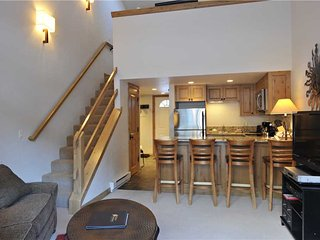 Comfortable Ketchum Studio rental with Deck - Ketchum vacation rentals