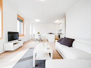 Sky View Apartment v AZ Tower - Brno vacation rentals