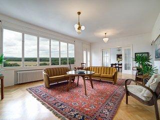 Perfect 1 bedroom Condo in Nosislav - Nosislav vacation rentals