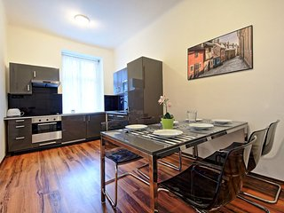 Belehradska Grande Apartment - Prague vacation rentals