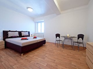 Comfortable 3 bedroom Condo in Prague - Prague vacation rentals