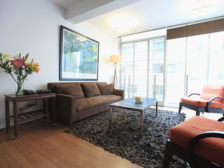Modern duplex apartment on Arquímedes St., Polanco - Mexico City vacation rentals