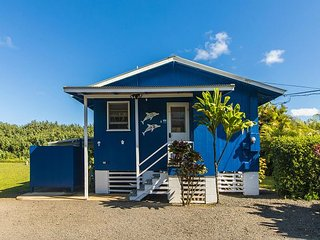 BE IN Hanalei & ON THE RIVER for a classic Kauai Experiance! - Hanalei vacation rentals