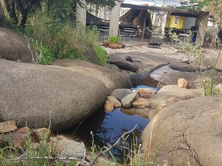 Bleuville ecological village guest house  x2 villas  2bedrooms per Villa - Midrand vacation rentals