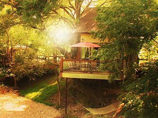 #2 Cardinal Casita - River Road Treehouses - New Braunfels vacation rentals