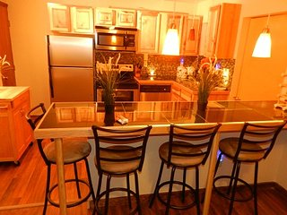 2-Bedroom Condo in Downtown Lake Placid - Blue Frost Unit #3 - Lake Placid vacation rentals