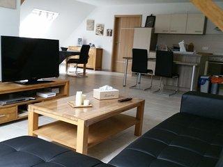 Gîte de charme moderne et très spacieux, tout confort - Sarreguemines vacation rentals