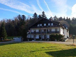 Wanderlust: Gemütliche Ferienwohnung im Wanderparadies, Bayrischer Wald - Waldkirchen vacation rentals