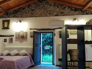 Nice House with Internet Access and A/C - Savoca vacation rentals
