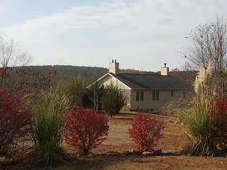 Our Private Paradise Serene, yet close to all! - Moneta vacation rentals