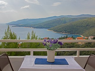 Free AC, nice sea view 76 - Rabac vacation rentals