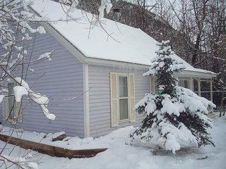 Cozy 2 bedroom Silver Plume House with Deck - Silver Plume vacation rentals