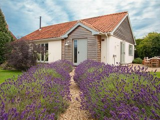 Wonderful 3 bedroom House in Brancaster - Brancaster vacation rentals