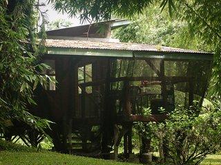 Exotic Pine Cabin - Pahoa vacation rentals