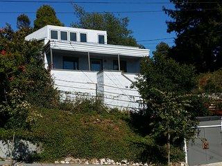 Sunny home by the Berkeley Rose Garden - Berkeley vacation rentals