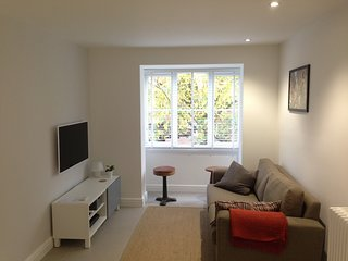 Gorgeous Condo with Washing Machine and Television - Surbiton vacation rentals