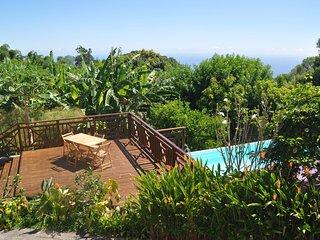 Meublé de tourisme Le Passiflora - Saint-Joseph vacation rentals