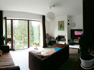 Cozy apartment with spectacular panoramic forest view - Poiana Brasov vacation rentals